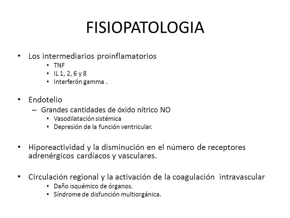 FISIOPATOLOGIA Los intermediarios proinflamatorios Endotelio