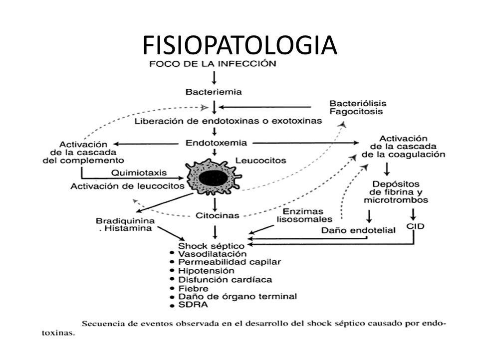 FISIOPATOLOGIA Las alteraciones de la coagulación se expresan a