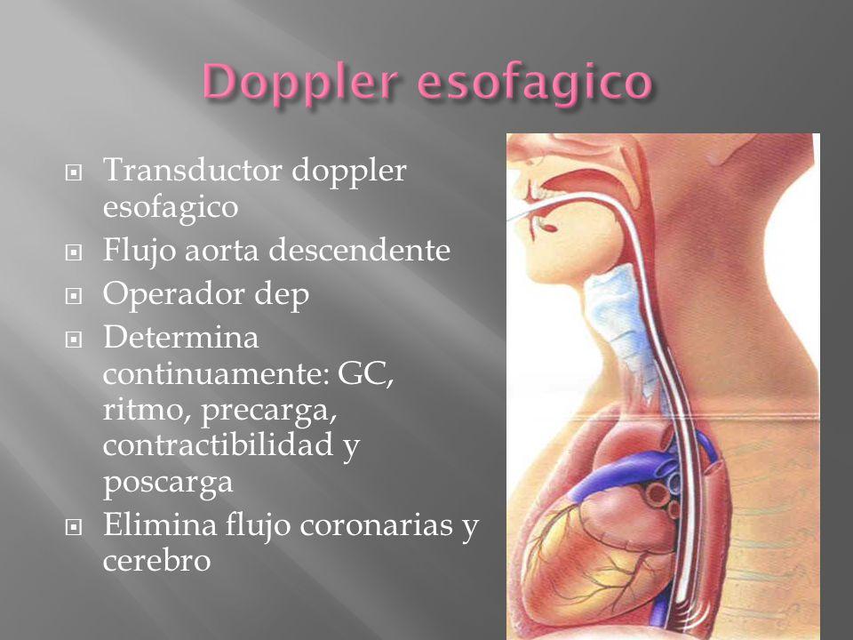 Doppler esofagico Transductor doppler esofagico