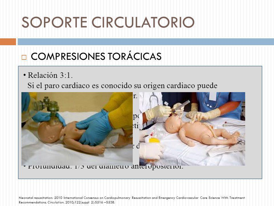 SOPORTE CIRCULATORIO COMPRESIONES TORÁCICAS Relación 3:1.