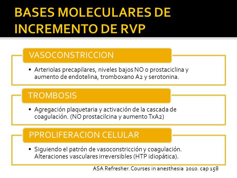 BASES MOLECULARES DE INCREMENTO DE RVP