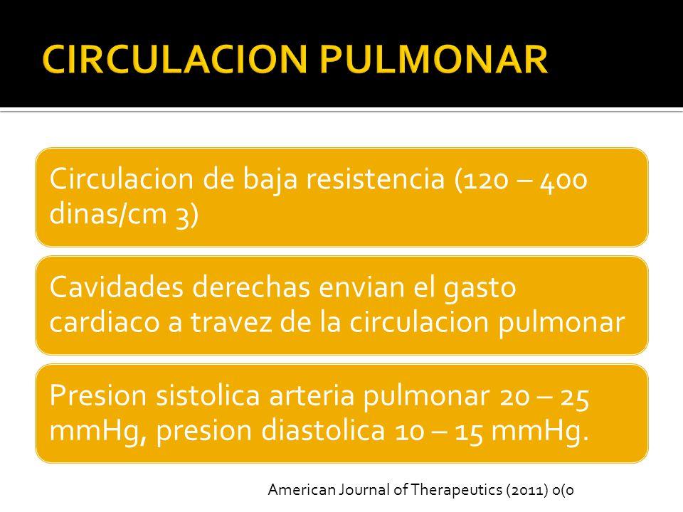 CIRCULACION PULMONAR Circulacion de baja resistencia (120 – 400 dinas/cm 3)
