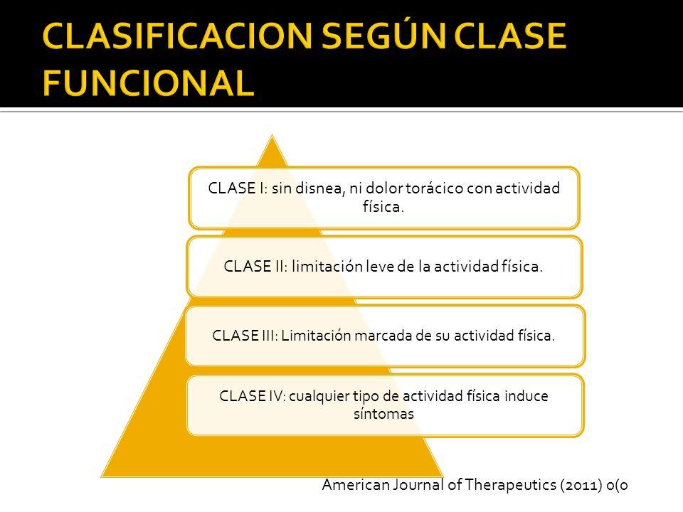 CLASIFICACION SEGÚN CLASE FUNCIONAL