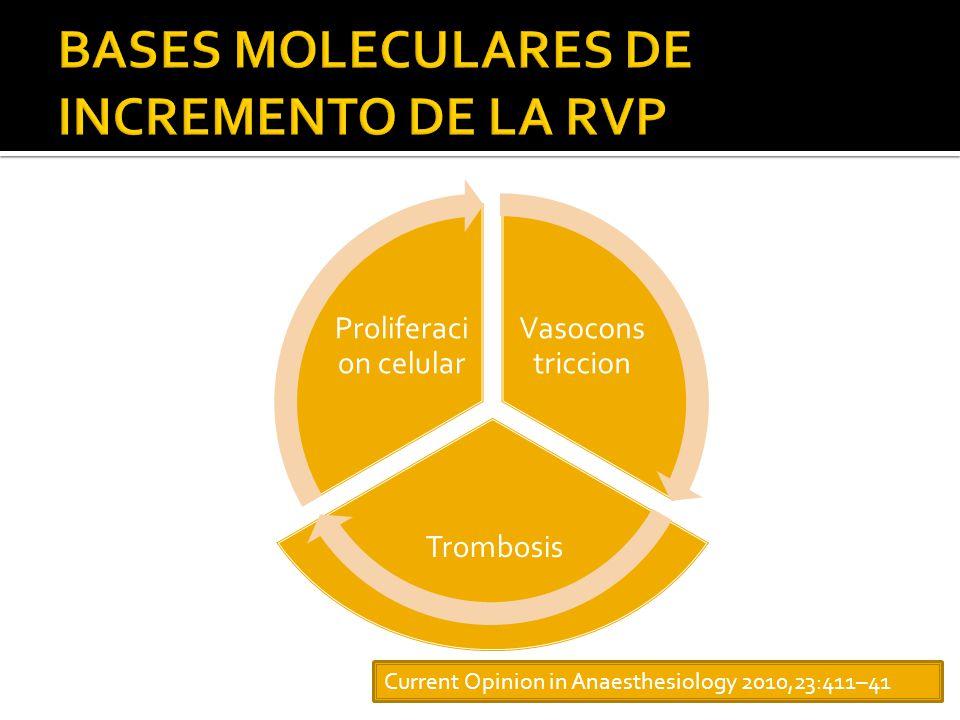 BASES MOLECULARES DE INCREMENTO DE LA RVP