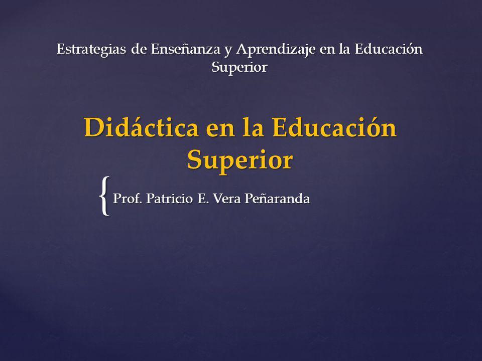 Prof. Patricio E. Vera Peñaranda