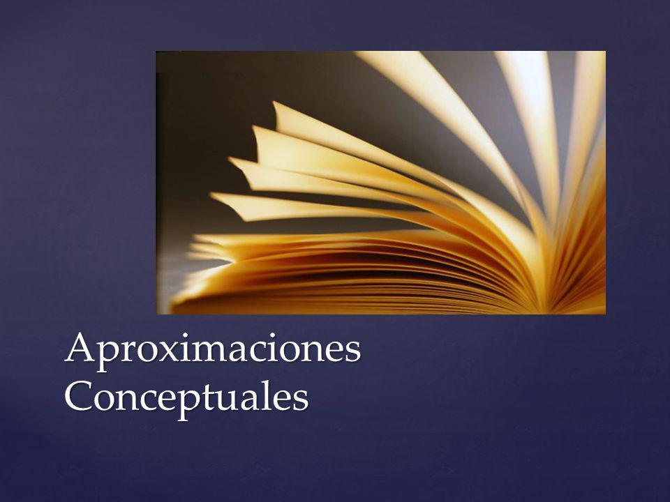 Aproximaciones Conceptuales