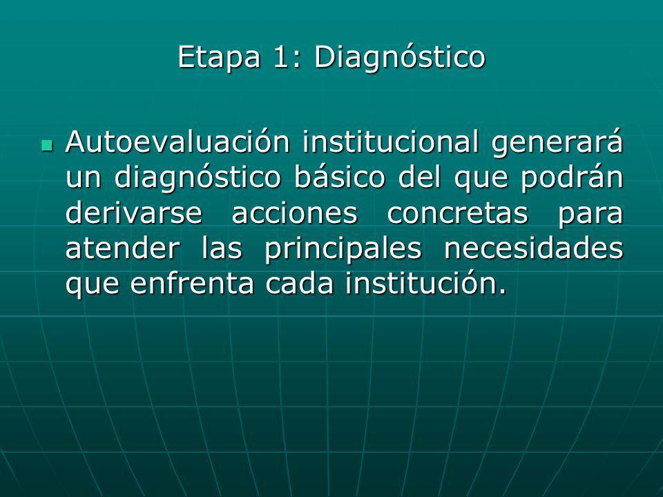 Etapa 1: Diagnóstico