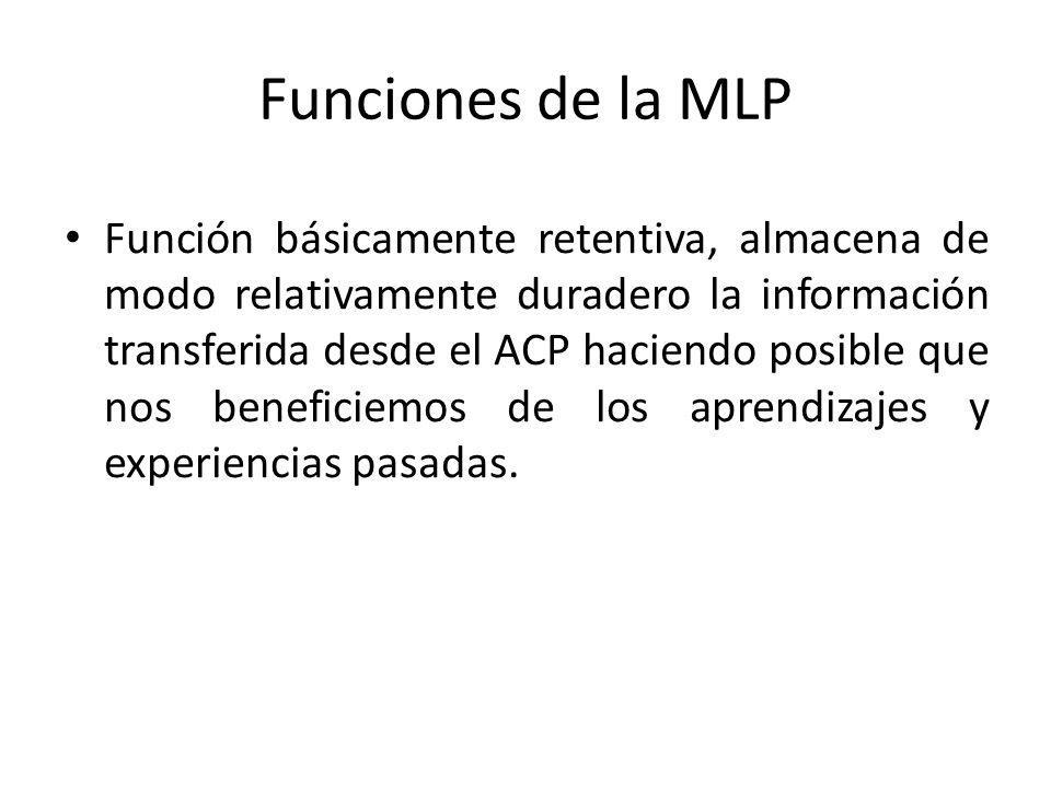 Funciones de la MLP