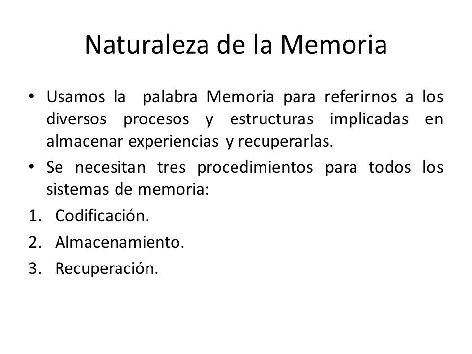Naturaleza de la Memoria