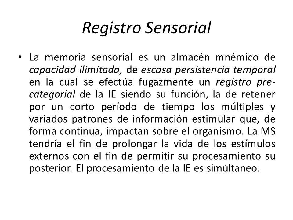 Registro Sensorial