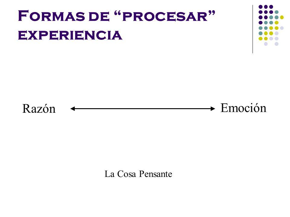 Formas de procesar experiencia