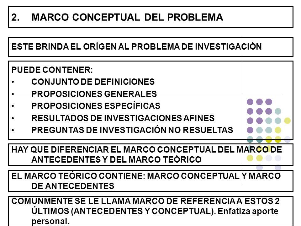 MARCO CONCEPTUAL DEL PROBLEMA