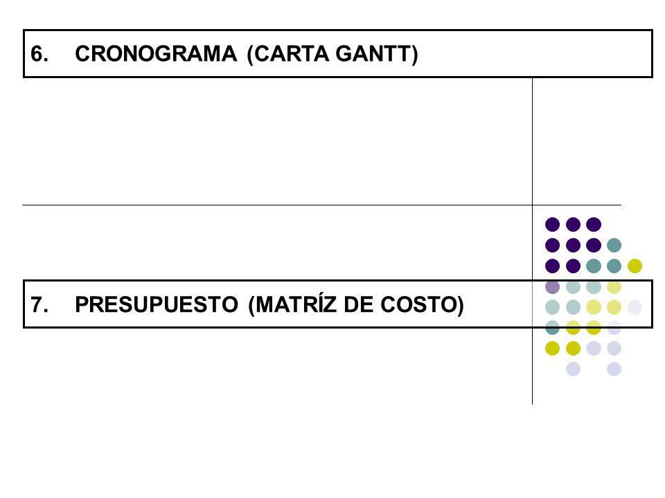 CRONOGRAMA (CARTA GANTT)