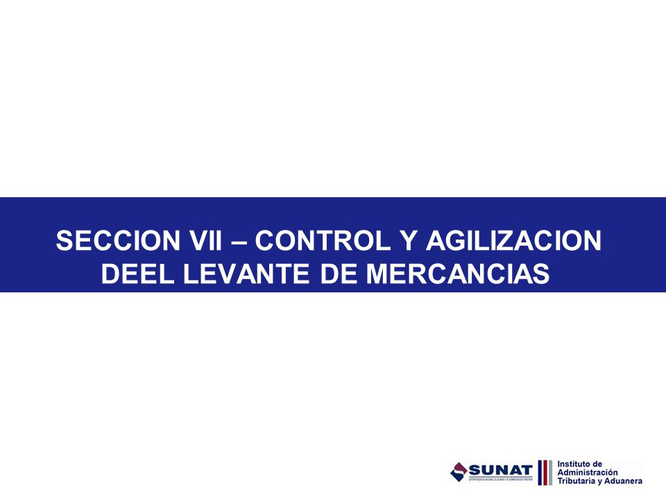 SECCION VII – CONTROL Y AGILIZACION DEEL LEVANTE DE MERCANCIAS