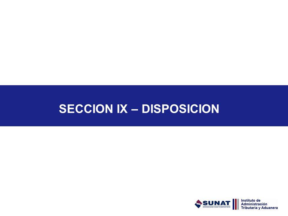 SECCION IX – DISPOSICION