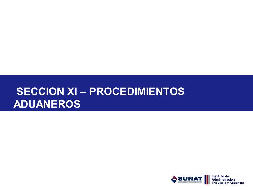SECCION XI – PROCEDIMIENTOS ADUANEROS