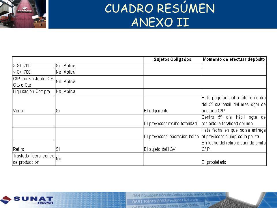 CUADRO RESÚMEN ANEXO II