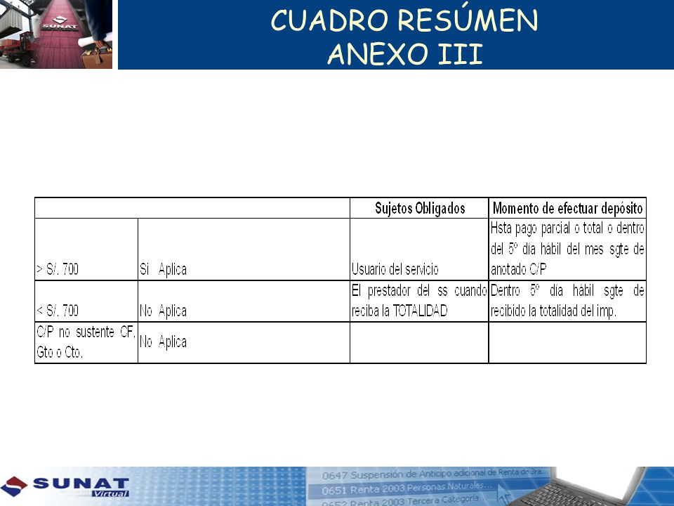 CUADRO RESÚMEN ANEXO III