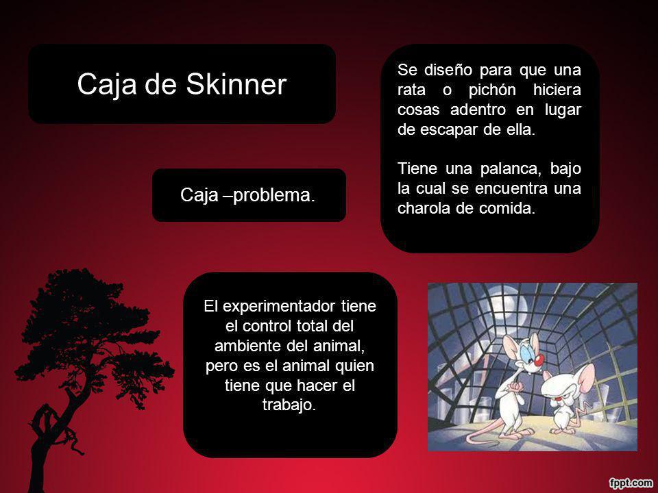 Caja de Skinner Caja –problema.