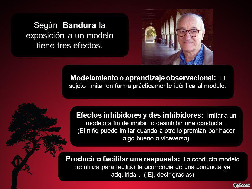 Según Bandura la exposición a un modelo tiene tres efectos.