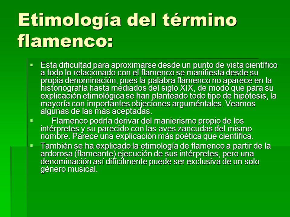 Etimología del término flamenco: