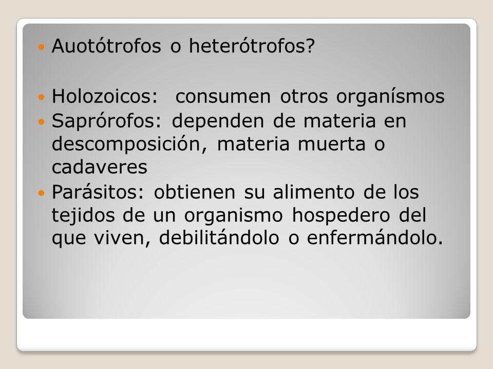 Auotótrofos o heterótrofos