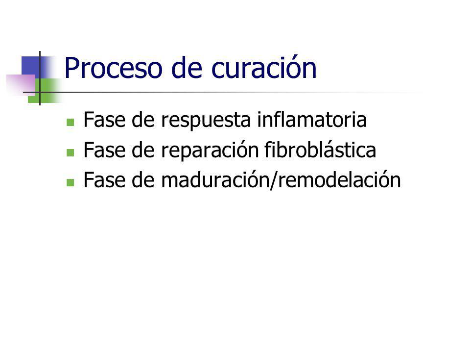 Proceso de curación Fase de respuesta inflamatoria