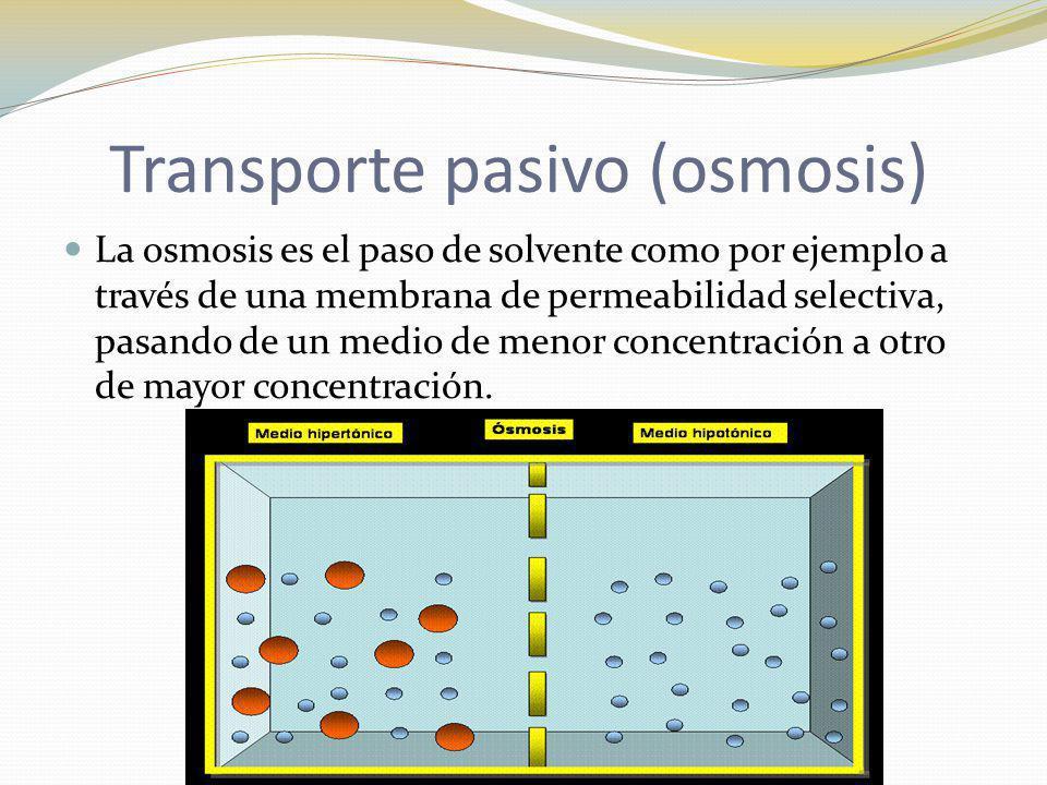Transporte pasivo (osmosis)