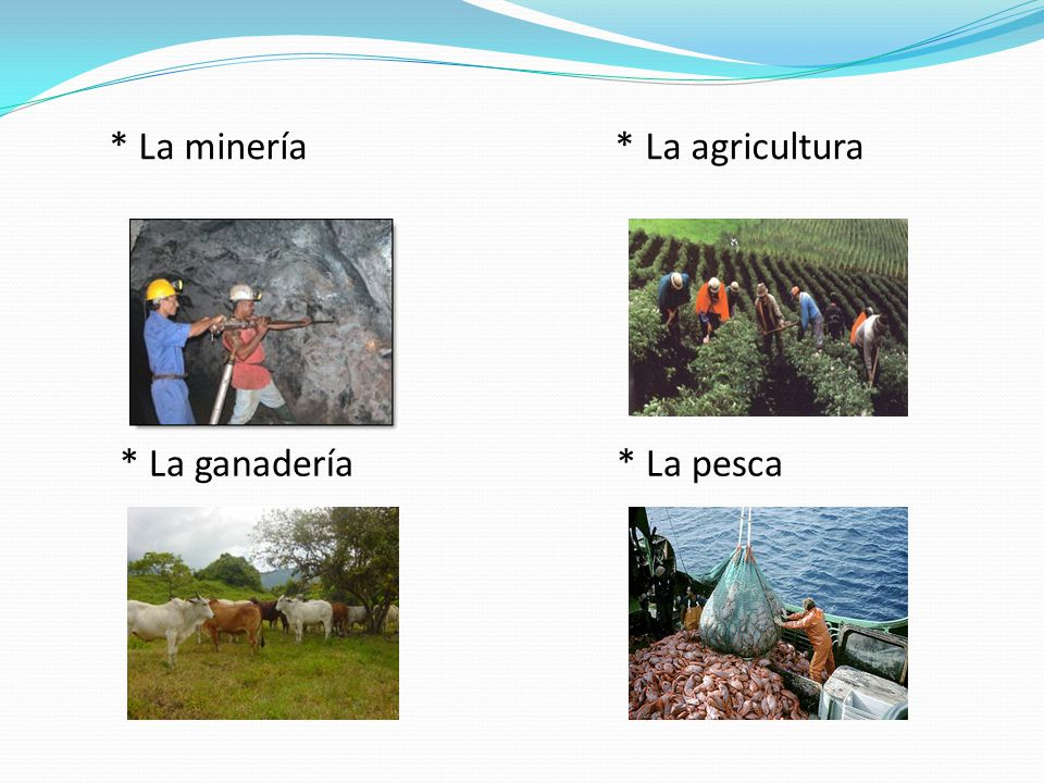 * La minería * La agricultura