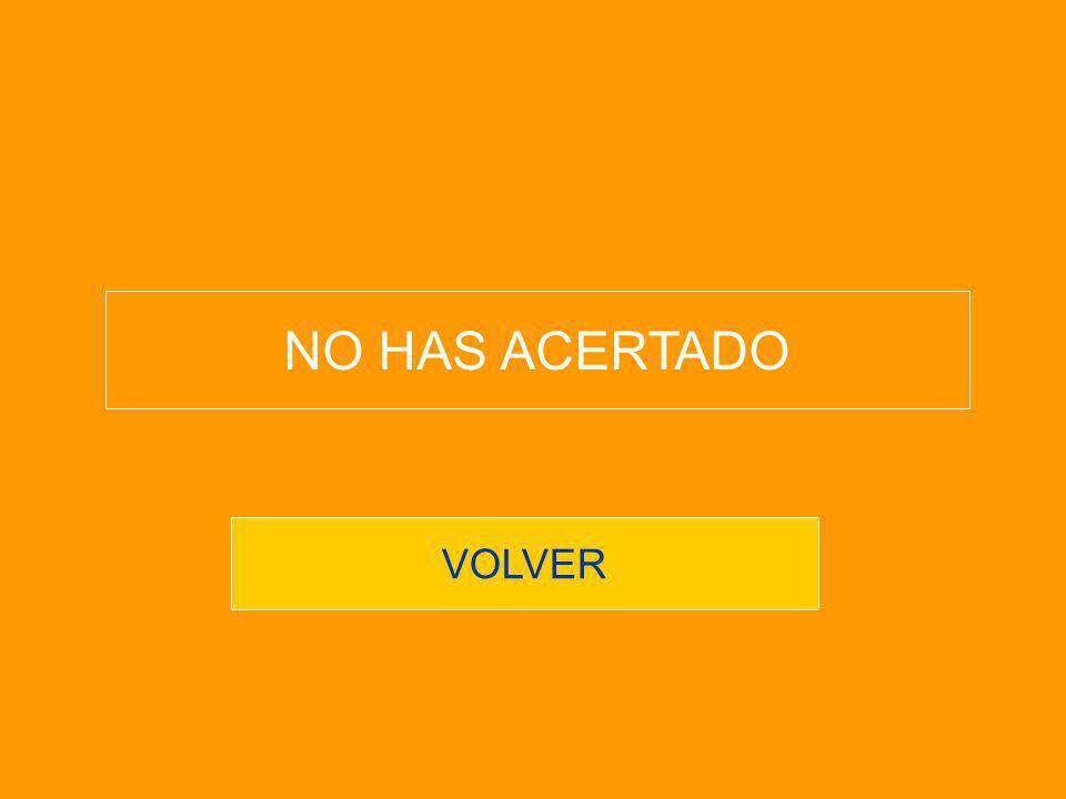 NO HAS ACERTADO VOLVER