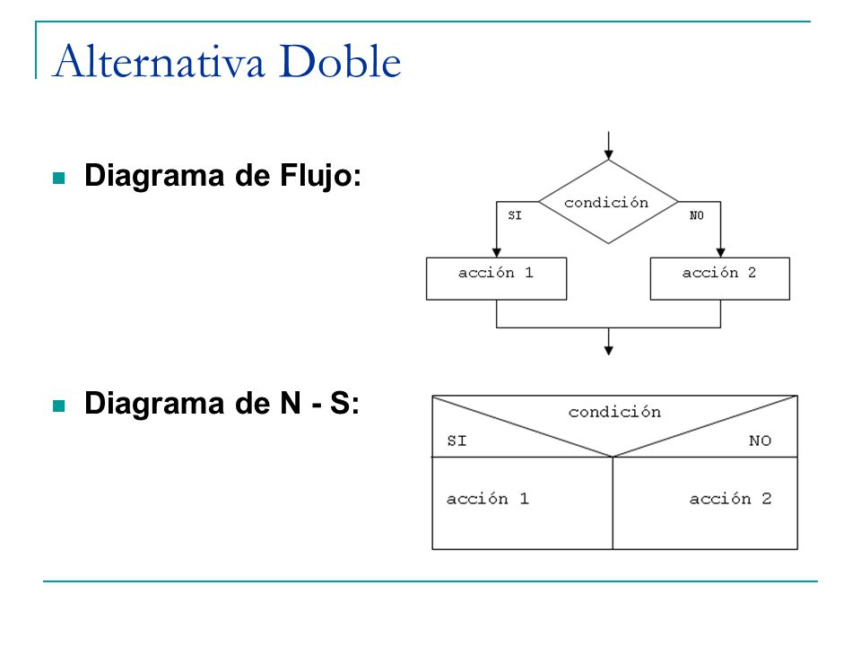 Alternativa Doble Diagrama de Flujo: Diagrama de N - S: