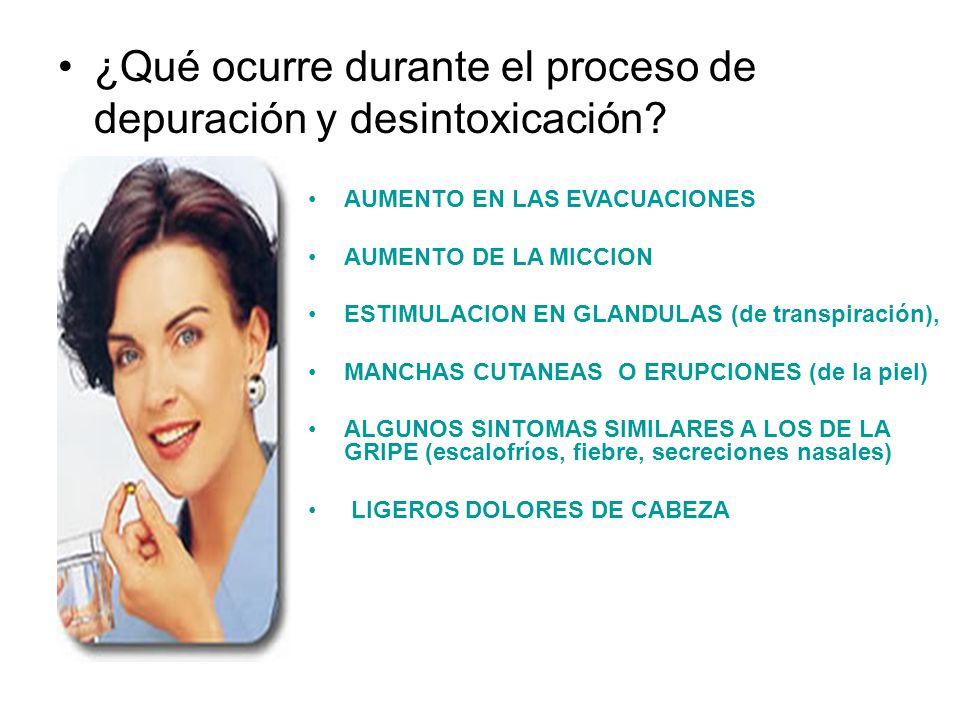 ¿Qué ocurre durante el proceso de depuración y desintoxicación