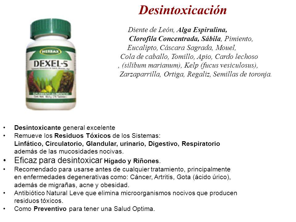 Eficaz para desintoxicar Hígado y Riñones.