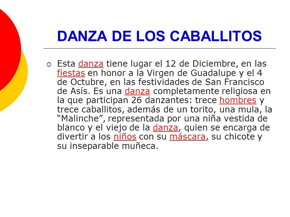 DANZA DE LOS CABALLITOS