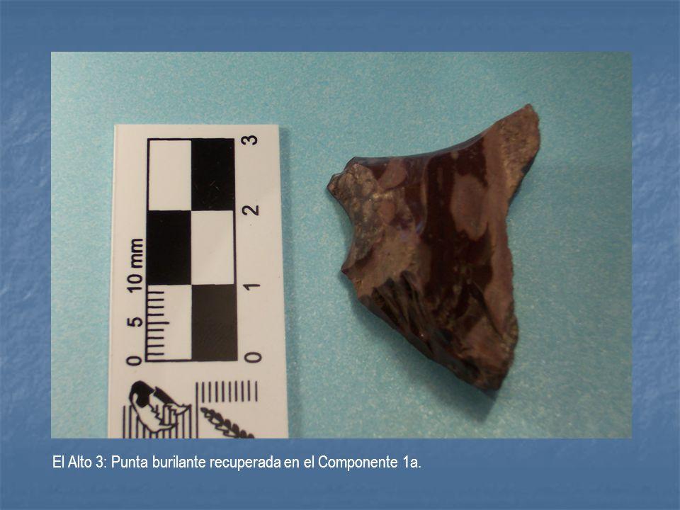 El Alto 3: Punta burilante recuperada en el Componente 1a.