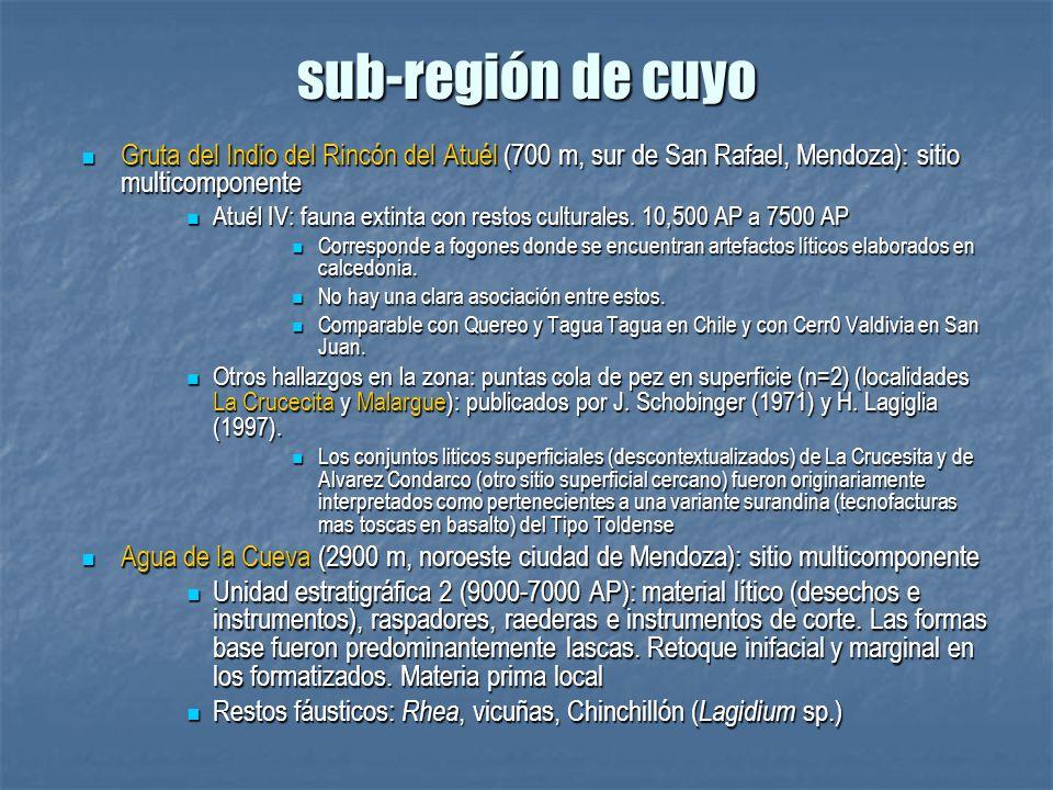 sub-región de cuyo Gruta del Indio del Rincón del Atuél (700 m, sur de San Rafael, Mendoza): sitio multicomponente.