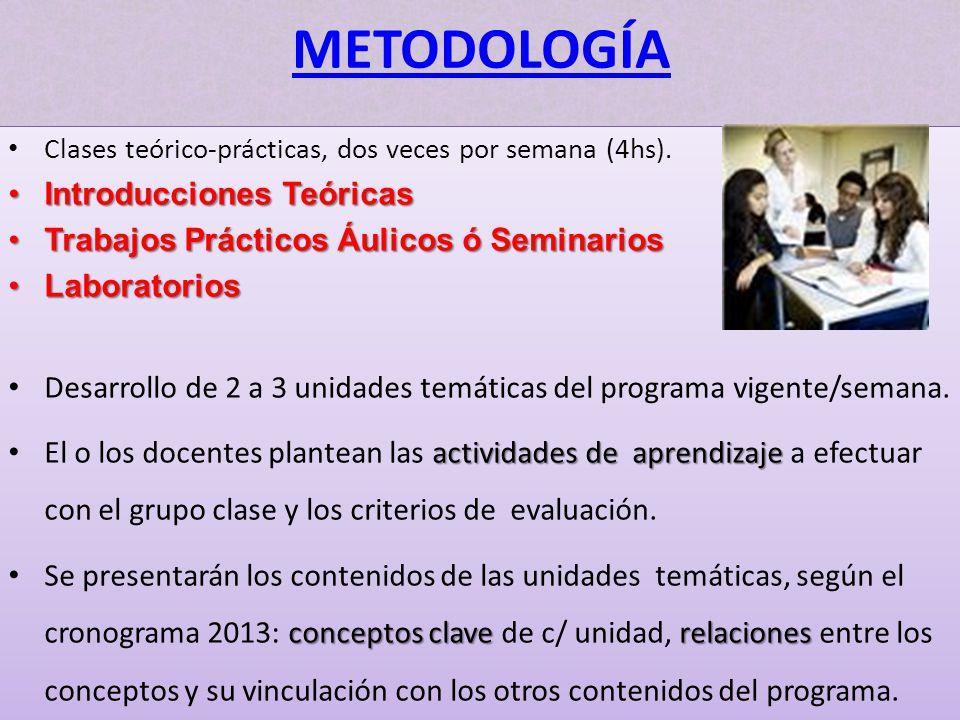 METODOLOGÍA Introducciones Teóricas