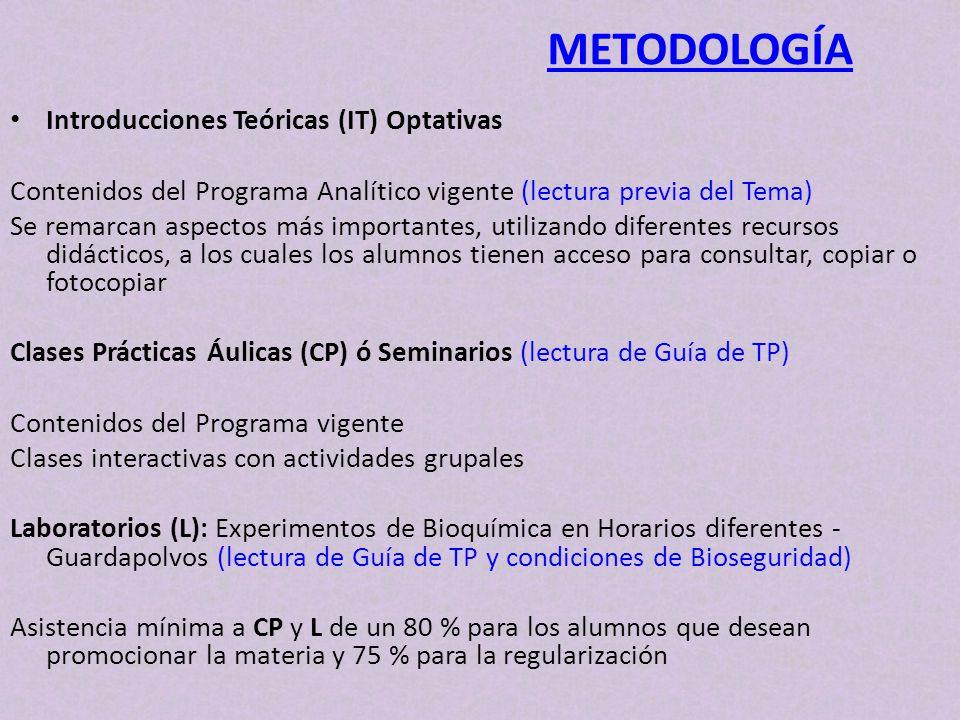 METODOLOGÍA Introducciones Teóricas (IT) Optativas