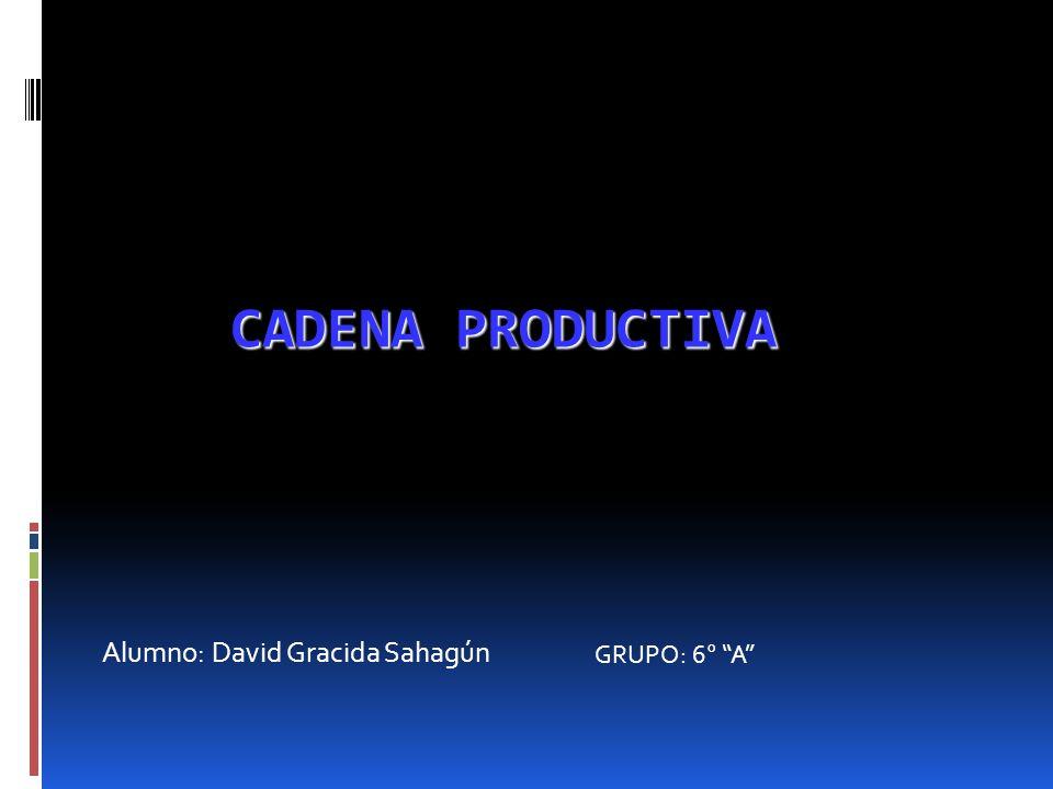 Alumno: David Gracida Sahagún