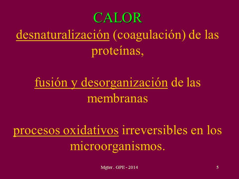 CALOR desnaturalización (coagulación) de las proteínas, fusión y desorganización de las membranas procesos oxidativos irreversibles en los microorganismos.