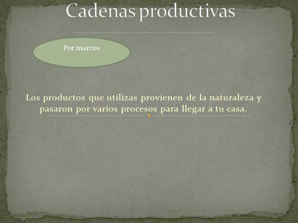 Por marcos Cadenas productivas.