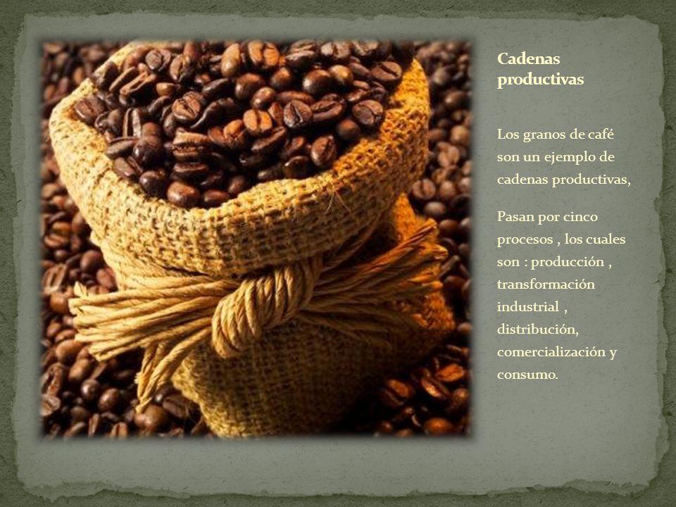 Cadenas productivas Los granos de café son un ejemplo de cadenas productivas,