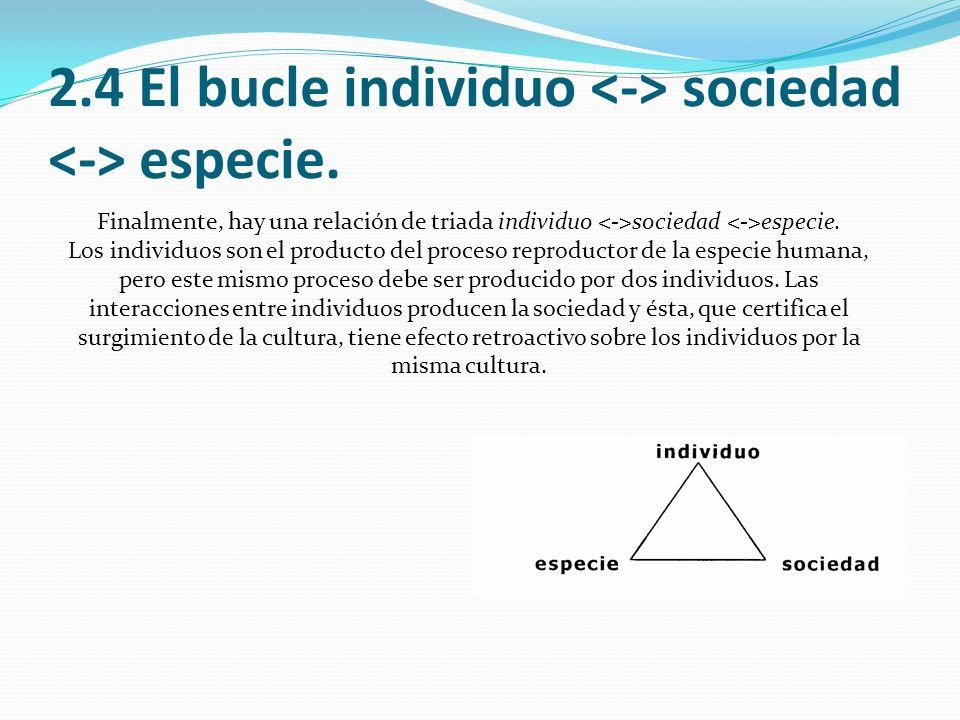 2.4 El bucle individuo <-> sociedad <-> especie.