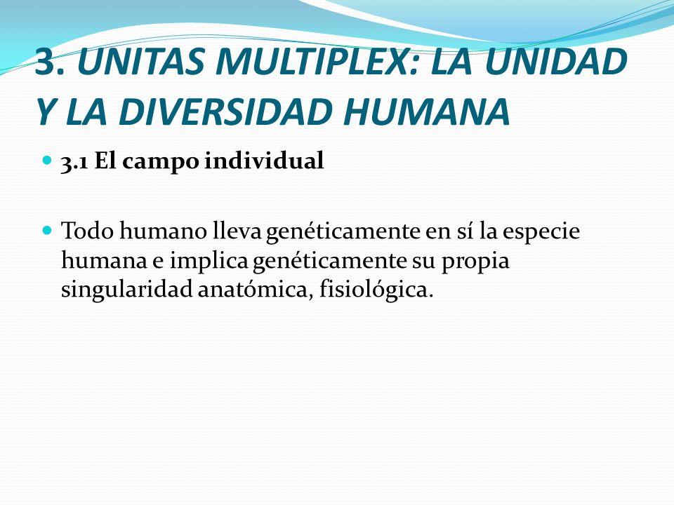 3. UNITAS MULTIPLEX: LA UNIDAD Y LA DIVERSIDAD HUMANA