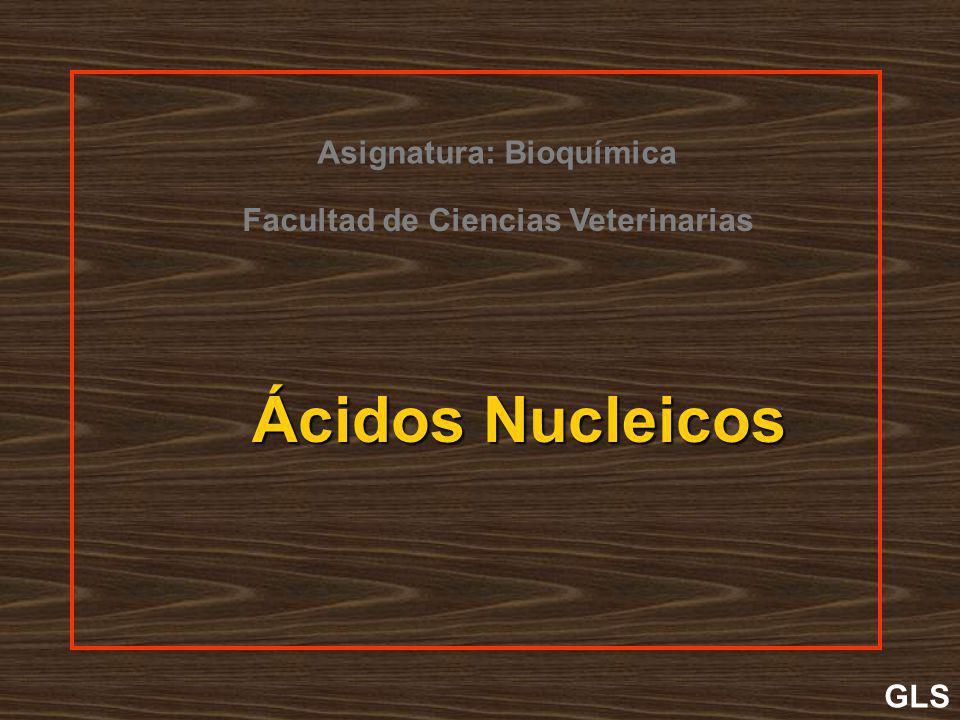 Ácidos Nucleicos Asignatura: Bioquímica