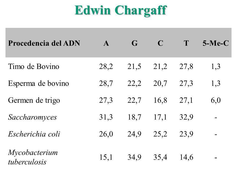 Edwin Chargaff Procedencia del ADN A G C T 5-Me-C Timo de Bovino 28,2