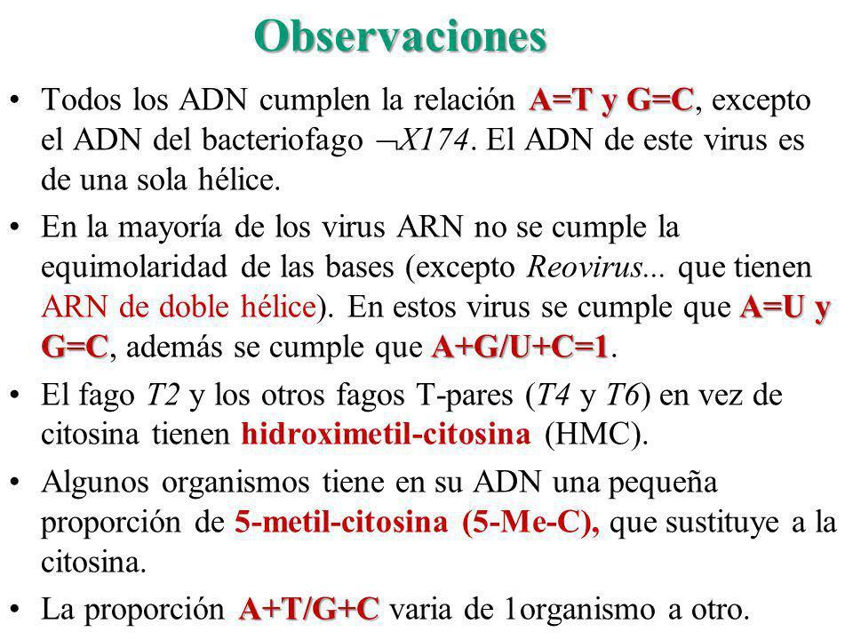 Observaciones Todos los ADN cumplen la relación A=T y G=C, excepto el ADN del bacteriofago X174. El ADN de este virus es de una sola hélice.