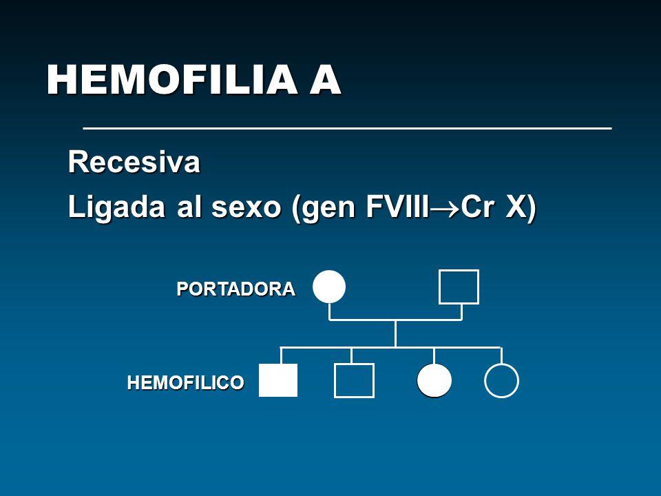 HEMOFILIA A Recesiva Ligada al sexo (gen FVIIICr X) PORTADORA