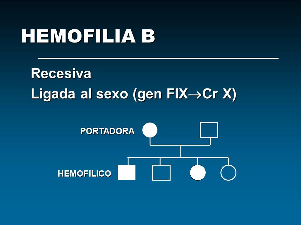 HEMOFILIA B Recesiva Ligada al sexo (gen FIXCr X) PORTADORA