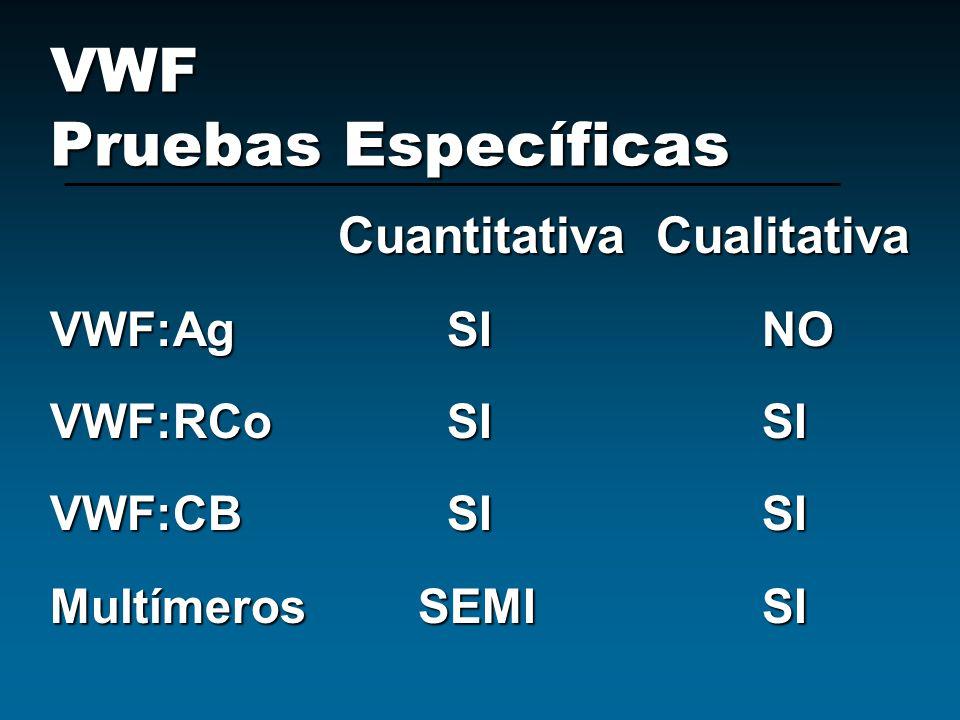 VWF Pruebas Específicas